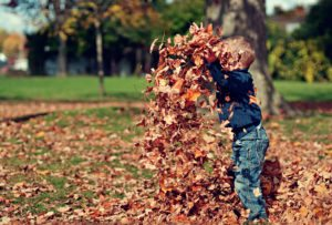toddler playing in the leaves in Autumn
