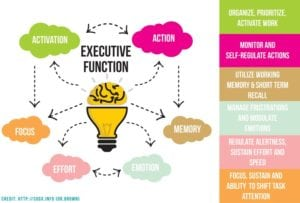 executive function flow chart graphic