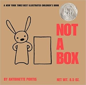 Not a Box book cover